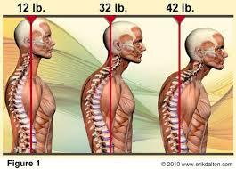 anterior neck position